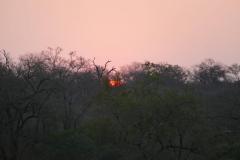 Sunset, Mkhaya Game Reseve - kingdom of eSwatini