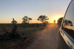 Sunset, Zambezi National Park - Zimbabwe